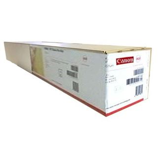Immagine di Photo paper Pro Platinum Fine Art 300gr 1067mmx30,5M