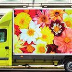 Immagine di Laminazione polimerica Avery DOL 2860 gloss 80my 106,7cmx50M